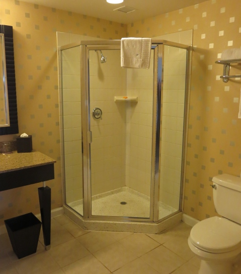 Though this shower is not plastic, it is ready to be nuked and replaced with a glass cube.