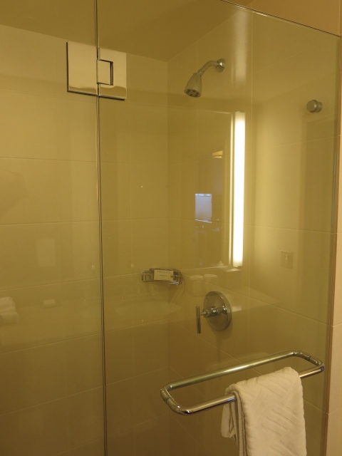 Hilton has a glass shower.