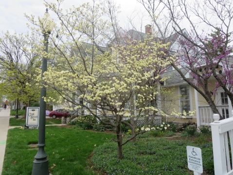 Spring at the Grant Street Inn