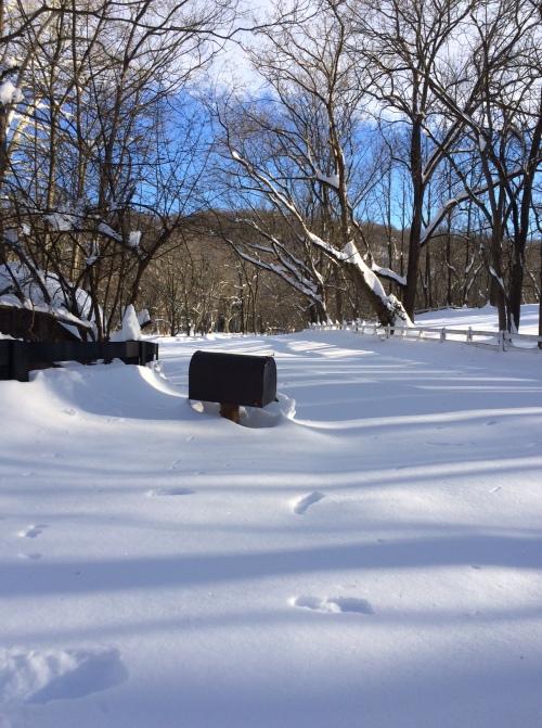 Mailbox in Virginia
