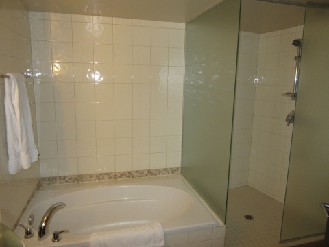 Nice shower, gigantic tub