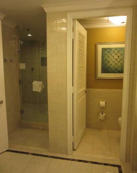 Shower in the bathroom suite (itself several rooms)